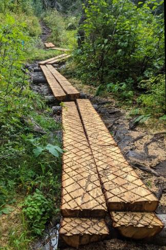 New boardwalk through the damp meadows